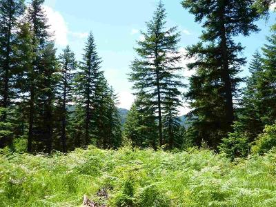 Orofino Residential Lots & Land For Sale: Racoon Lane