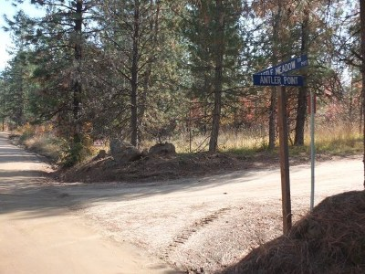 Boise County Residential Lots & Land For Sale: Castle Meadow