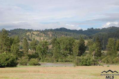 Boise County Residential Lots & Land For Sale: 11 Southfork Lane