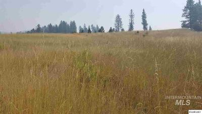 Kamiah Residential Lots & Land For Sale: 10 Remington Hills