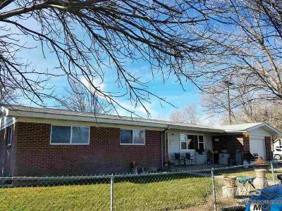 Owyhee County Single Family Home For Sale: 820 Riverside Ave