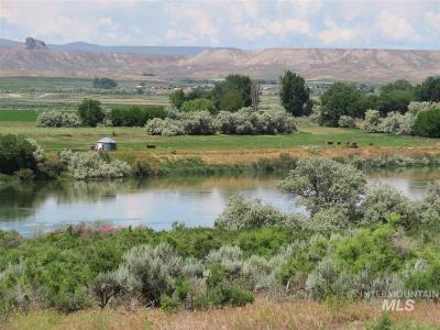 Farm & Ranch For Sale: 8185 Jay Bird Ln