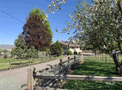 Single Family Home For Sale: 2450 Linda Vista