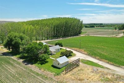 Ontario Farm & Ranch For Sale: 4824 Pioneer Road