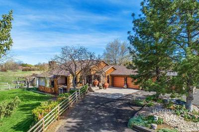 Single Family Home For Sale: 88 S Cotterell Drive