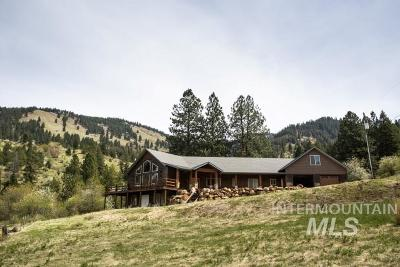 Riggins ID Single Family Home For Sale: $1,250,000