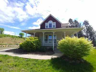 Kooskia Single Family Home For Sale: 210 Wild Plum