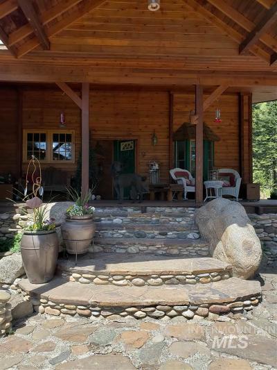 Grangeville Single Family Home For Sale: 602 Cove Rd