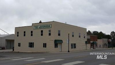 Commercial For Sale: 305 Main St