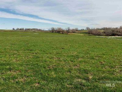 Buhl ID Residential Lots & Land For Sale: $299,900