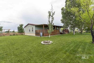 Owyhee County Single Family Home For Sale: 6757 Jump Creek Road