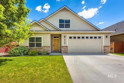 Boise Single Family Home For Sale: 9709 W Canford Dr.