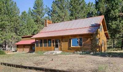 Idaho City Single Family Home For Sale: 110 Grimes Pass