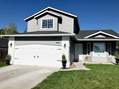 Boise Single Family Home For Sale: 4646 S Desert Gold Pl