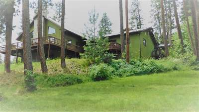Lewiston Single Family Home For Sale: 42631 Flat Iron Road