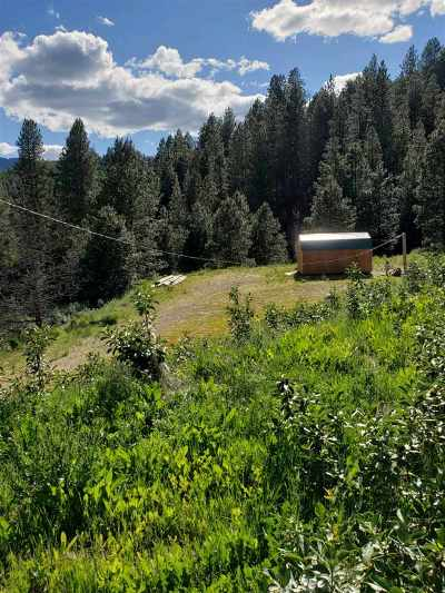 Boise County Residential Lots & Land For Sale: 126 Sperry Lode Loop Rd