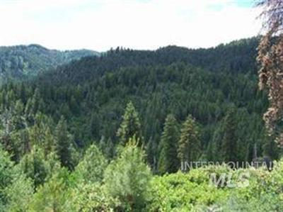 Boise County Residential Lots & Land For Sale: Ridgeview Dr