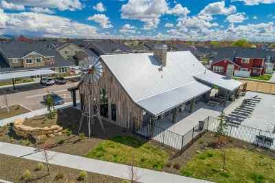 Eagle Multi Family Home For Sale: 47 W Tompkins Ln