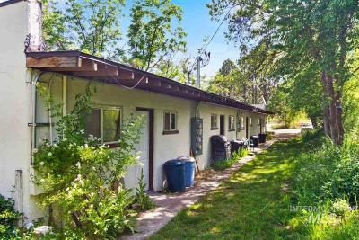 Emmett Multi Family Home For Sale: 987 E South Slope Rd