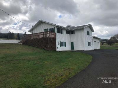 Grangeville Single Family Home For Sale: 434 Mount Idaho Grade Road