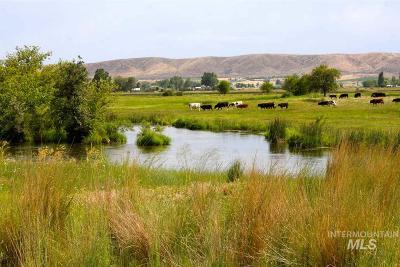 Emmett Farm & Ranch For Sale: 1803 Vanderdasson