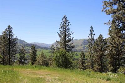 Kamiah Residential Lots & Land For Sale: 2 Remington Hills