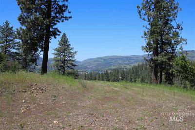 Kamiah Residential Lots & Land For Sale: 15 Remington Hills