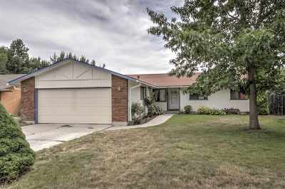 Boise Single Family Home For Sale: 3185 E South Pass