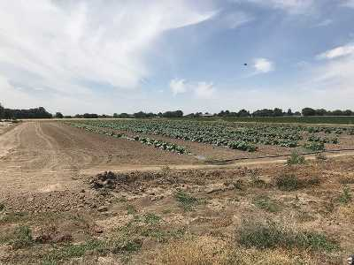 Nampa Residential Lots & Land For Sale: N Canada Rd