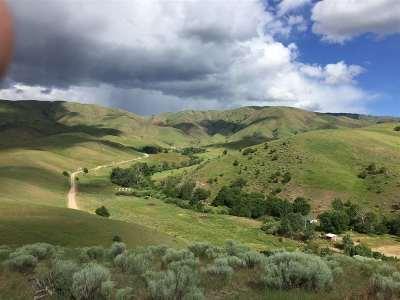 Boise County Residential Lots & Land For Sale: 3 Jackass Creek Road