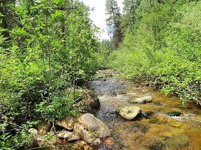 Boise County Residential Lots & Land For Sale: 1 Lower Ditch Rd.