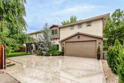 Boise Single Family Home For Sale: 4206 N Christine St