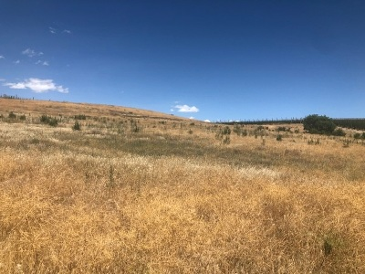 Canyon County Residential Lots & Land For Sale: 20216 Silver Spur Dr