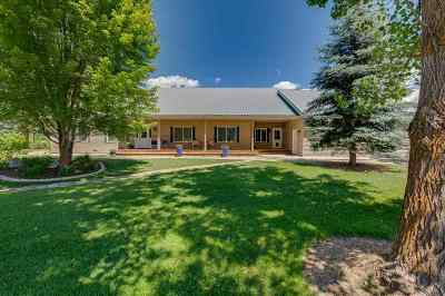 Single Family Home For Sale: 44 Anderson Creek Rd
