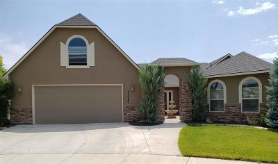 Boise Single Family Home For Sale: 11757 W Abram Ct.