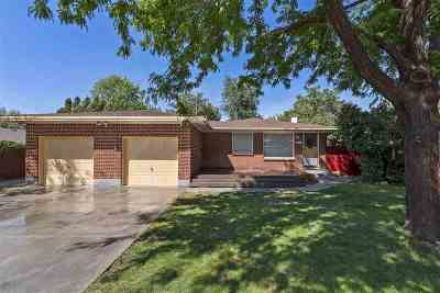 Boise Single Family Home For Sale: 2517 S Pond St