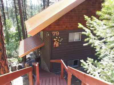 Single Family Home For Sale: 79 View Drive