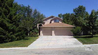 Boise Single Family Home New: 6428 S Mangrove Pl