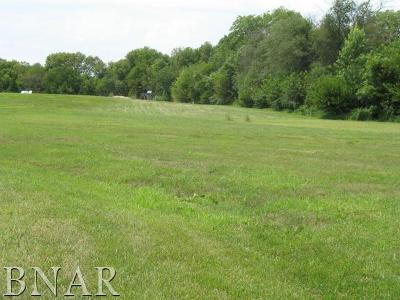 Clinton IL Residential Lots & Land For Sale: $34,900