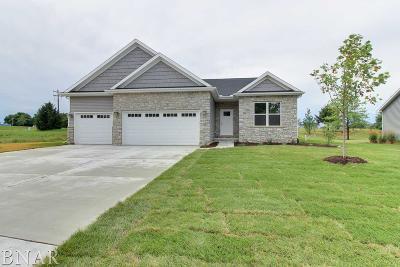 Lexington Single Family Home For Sale: 104 Prairie Ridge Drive