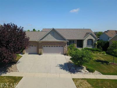 Normal Single Family Home For Sale: 2266 Holbrook