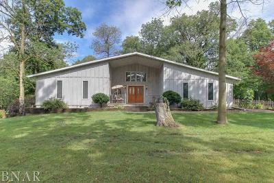 Lexington Single Family Home For Sale: 4 E Ridge Drive