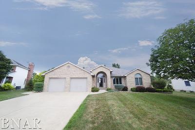 Lexington Single Family Home For Sale: 111 Meadow Creek