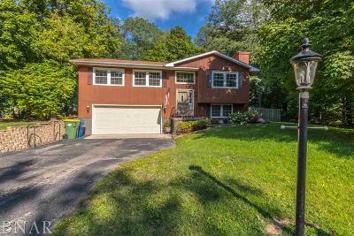 Lexington Single Family Home For Sale: 4 Gregory Lane