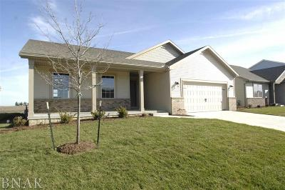 Normal Single Family Home For Sale: 1038 Stags Leap Road