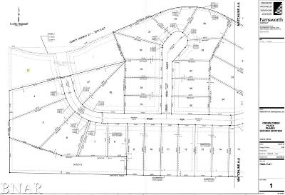 Downs Residential Lots & Land For Sale: 4 River Run