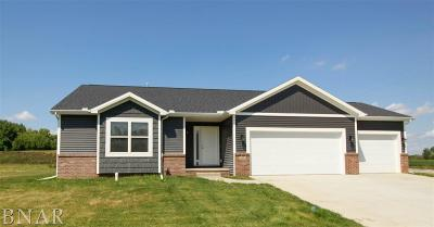 Downs Single Family Home For Sale: 110 Dode