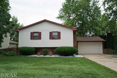 Normal Single Family Home For Sale: 1315 Hanson