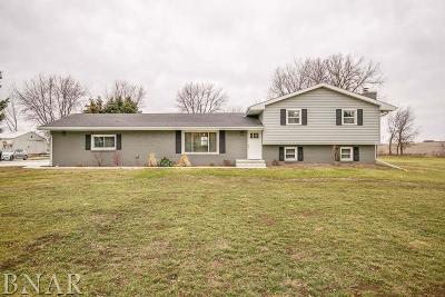 Lexington Single Family Home For Sale: 22186 Clarksville