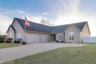Downs Single Family Home For Sale: 10 Harvey